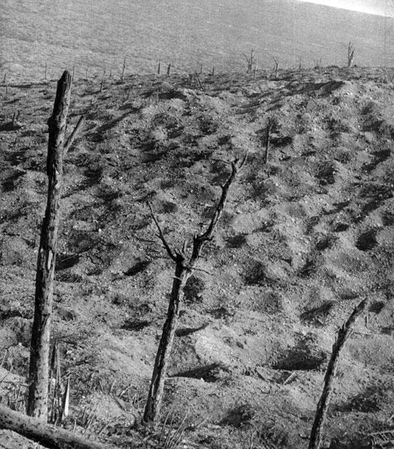 Ziemia. Miliony pocisków artyleryjskich zamieniały pola, lasy, sady, wsie w jałowe połacie wypalonego i przemielonego gruntu. W pustynię pełną odłamków, resztek wyposażenia, nie pogrzebanych szczątków ludzkich.