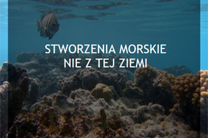 Stworzenia morskie nie z tej Ziemi