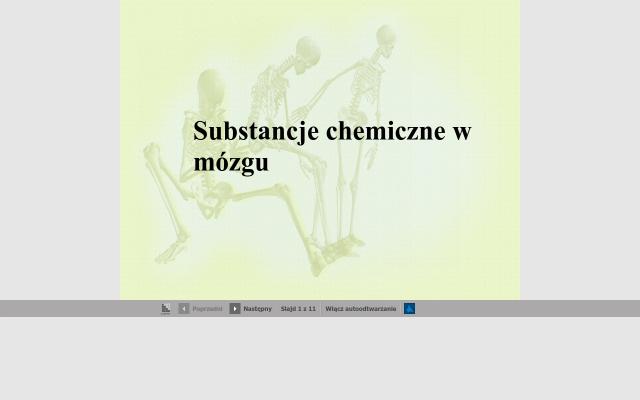 Substancje chemiczne w mózgu