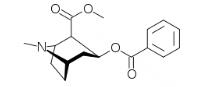 Nazewnictwo związków organicznych